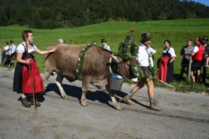 """""""Aufkränzen"""" for Cattle Drive (Photo: pixabay)"""