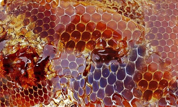 honey-948452_960_720